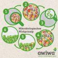 Darstellung mikrobiologisches Wirkprinzip Sanitärreiniger