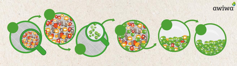 Das Bild zeigt wie Mikroorganismen organische Verschmutzungen entfernen und Gerüche neutralisieren